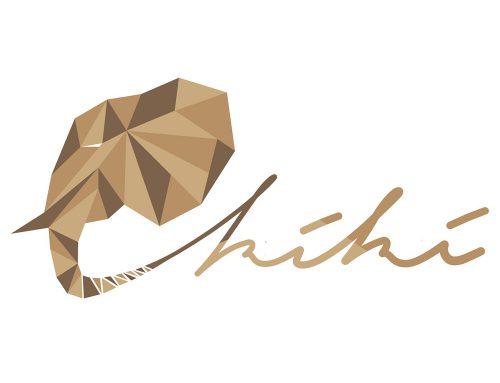 Logo für NIMO